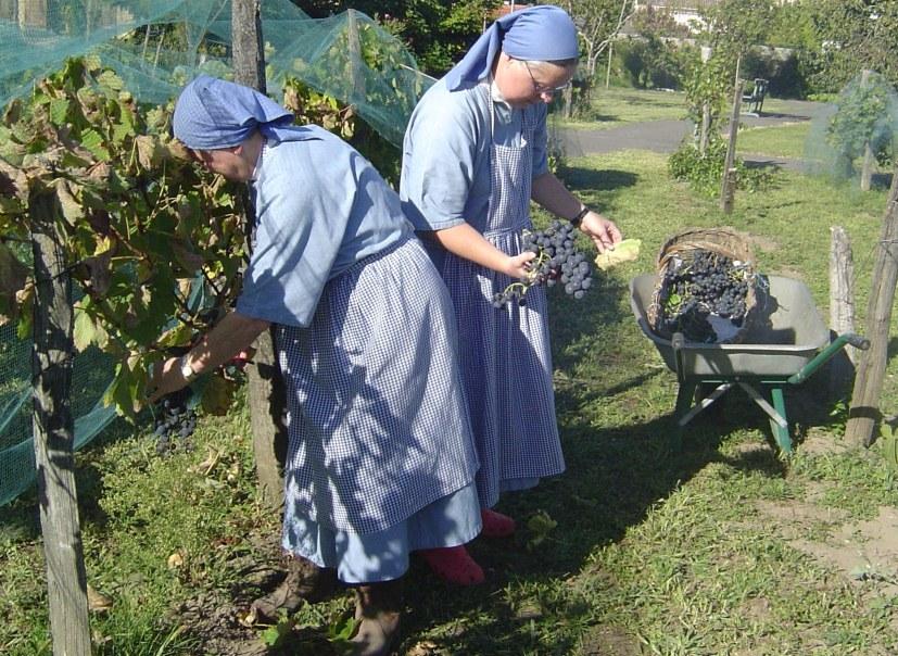 Travail au monastère de Dax